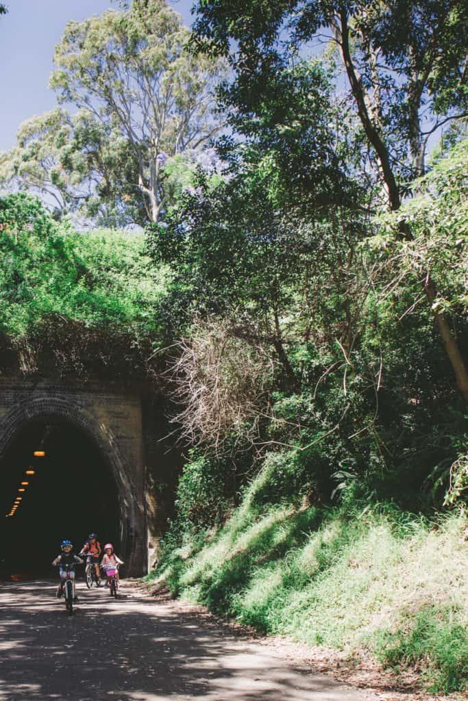 Fernleigh Tunnel along the Fernleigh Track, NSW Australia