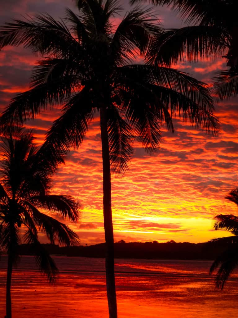 TravelwithMeraki-Sunset-fiji-Palm Trees-South Pacific