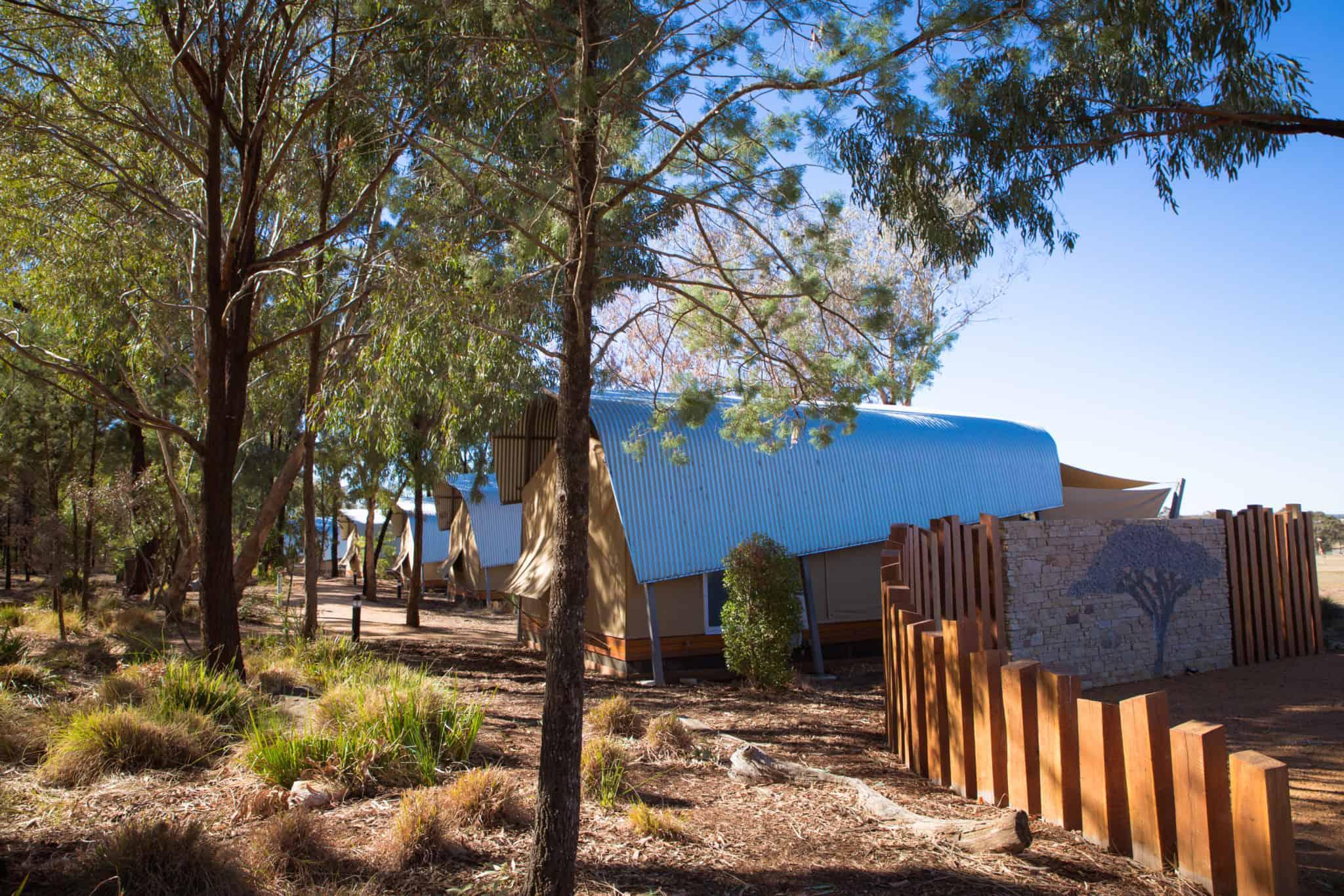 Travel With Meraki- Taronga Western Plains Zoo Dubbo Australia Zoofari Animal View Lodge