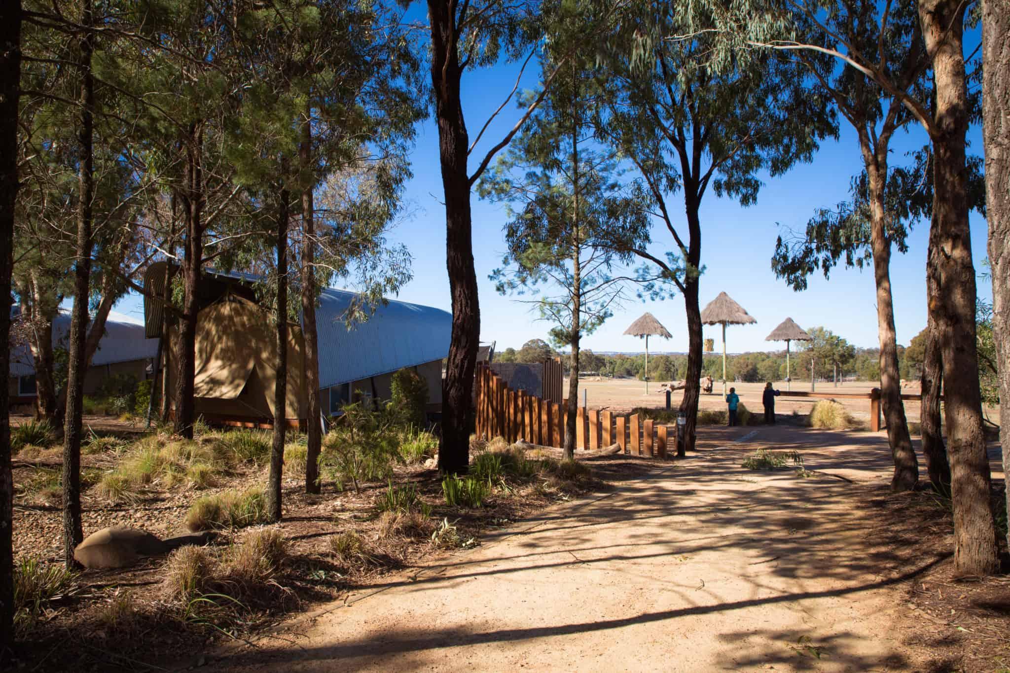 Travel With Meraki Taronga Western Plains Zoo Zoofari Lodge