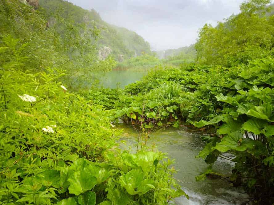 Plitvice Lakes in Rain