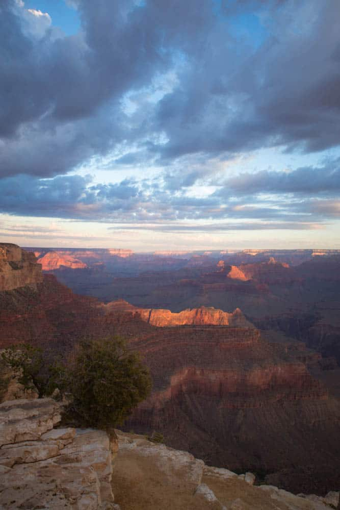 things to do in grand canyon with kids