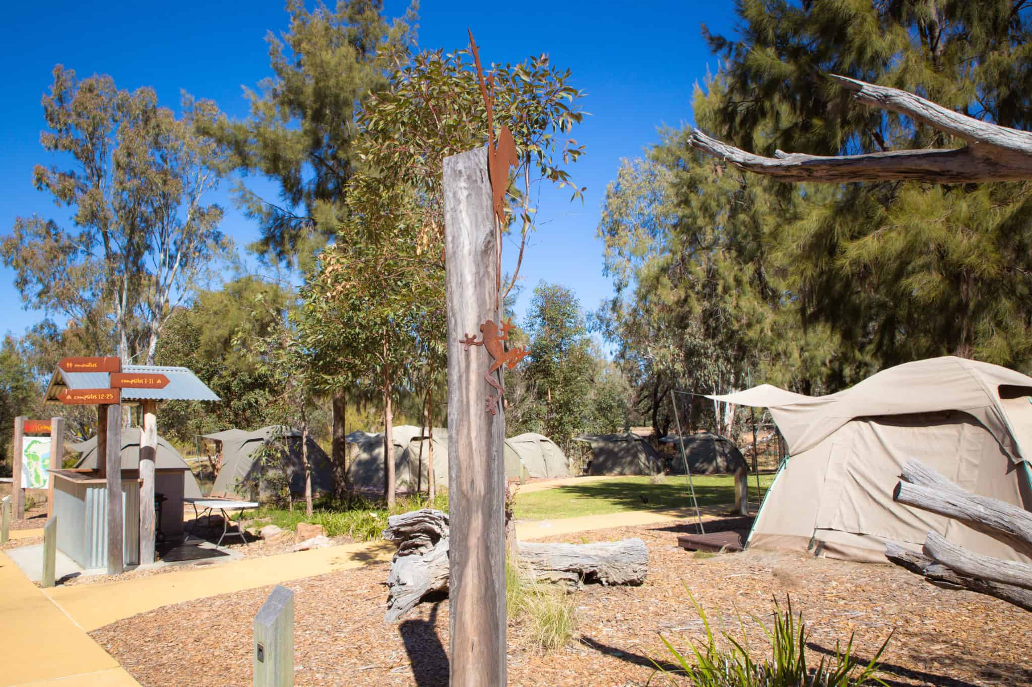 Dubbo Zoo Camping