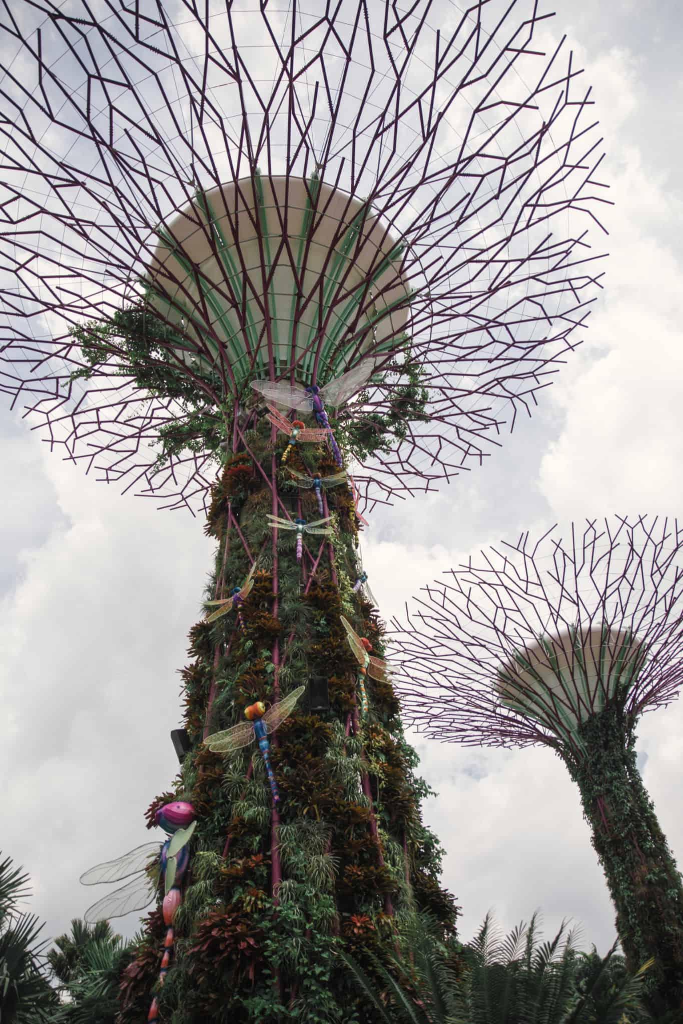 supertrees singapore