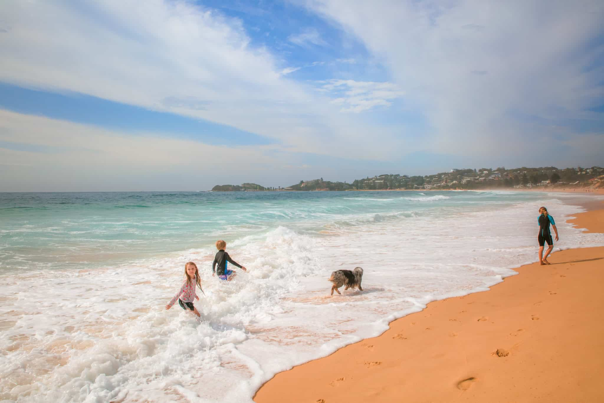 Travel With Meraki - Wamberal Beach -Dog Friendly Beach - Central Coast - NSW - Australia