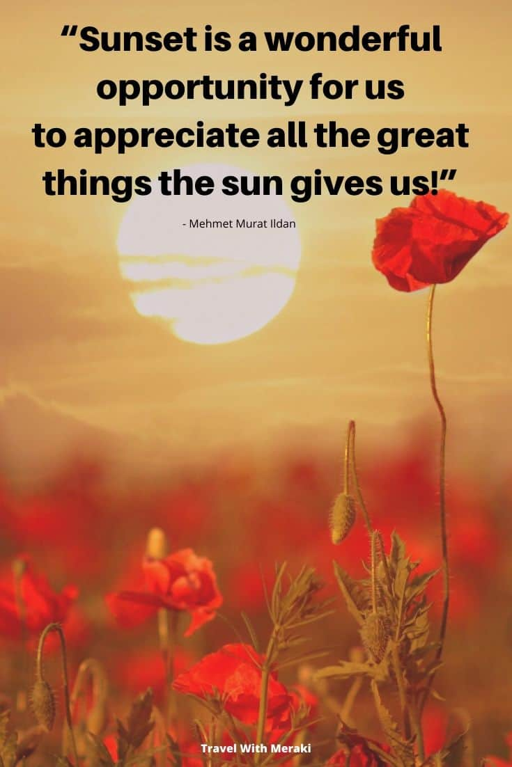 Quote About Appreciation For The Sun
