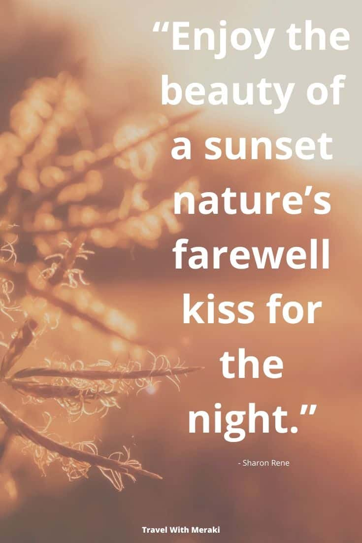 Quote About Nature Sunet